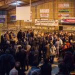 Concours d'animaux de boucherie - APOCAB
